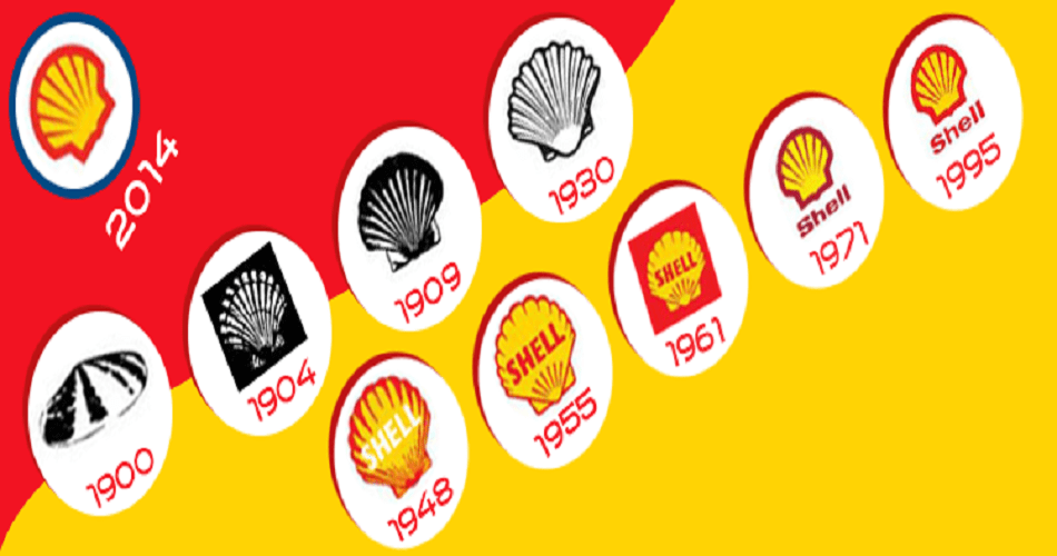 shell1-min
