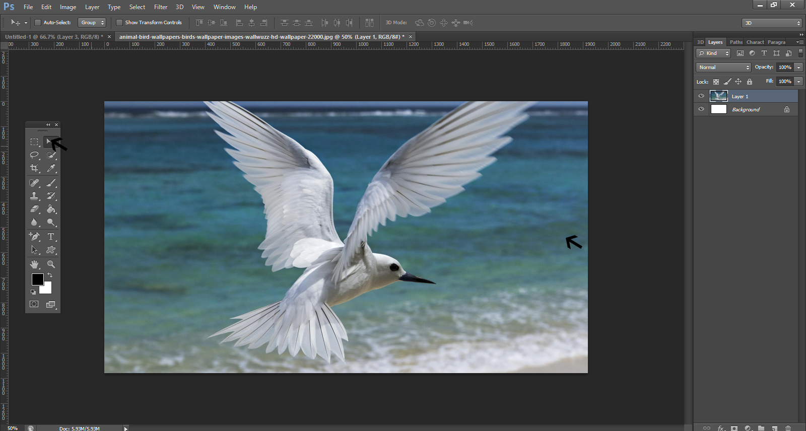 How To Remove Background From An Image In Photoshop3