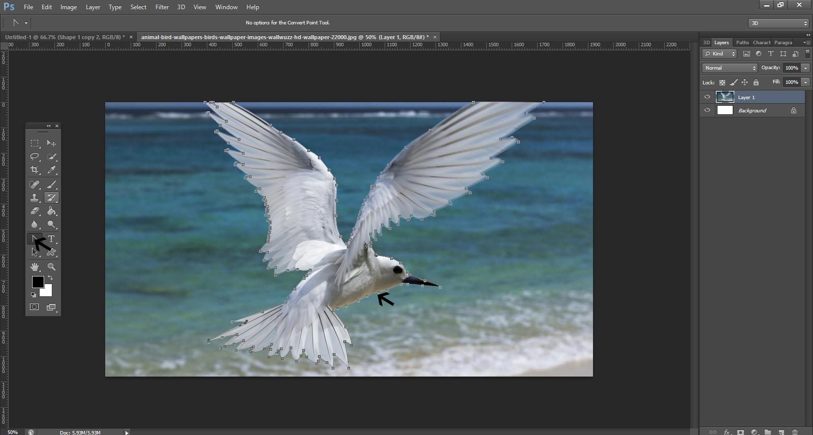 How To Remove Background From An Image In Photoshop4