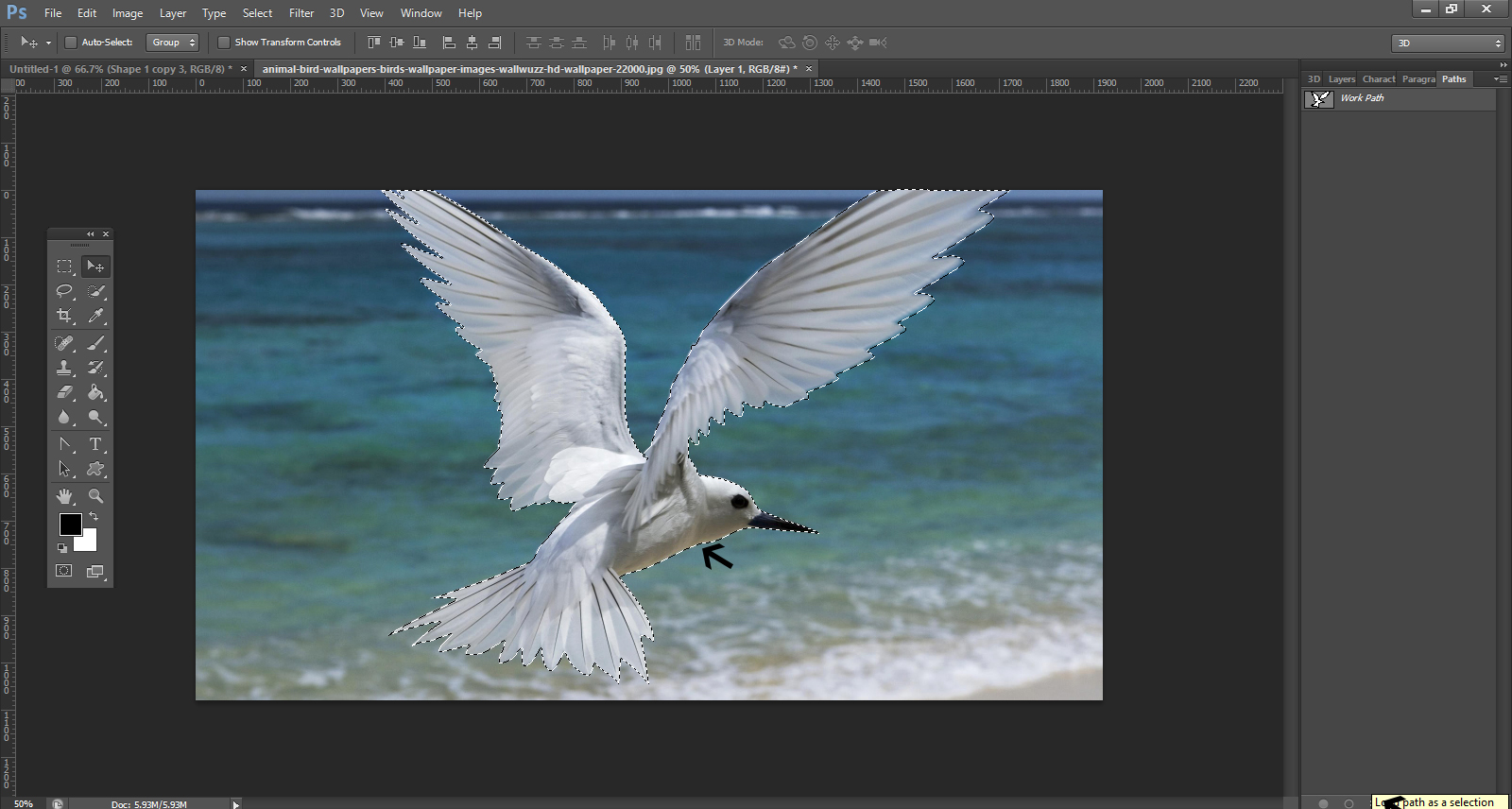 How To Remove Background From An Image In Photoshop5