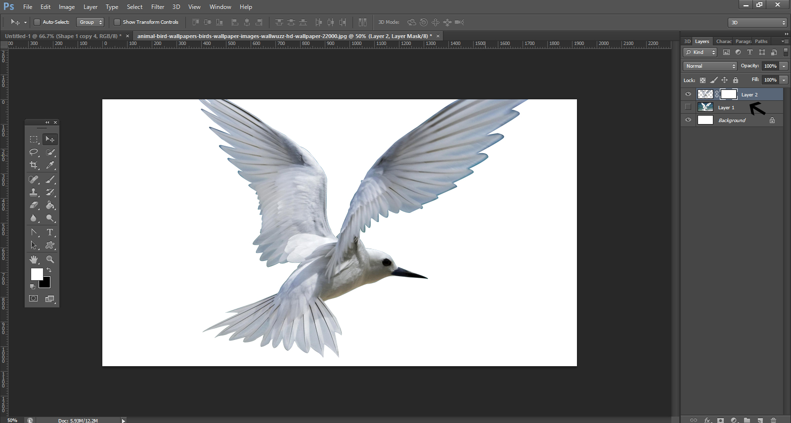 How To Remove Background From An Image In Photoshop7