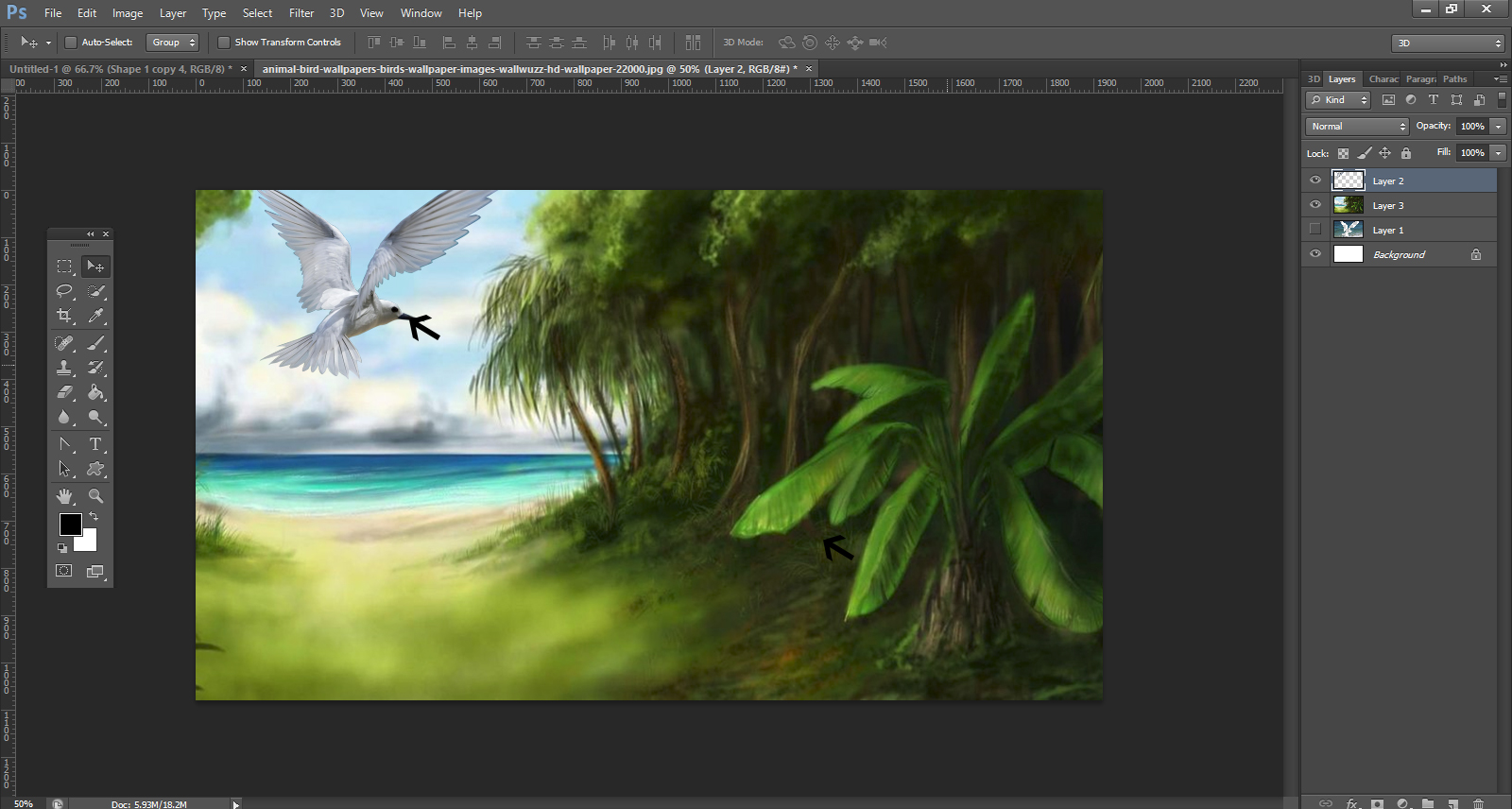 How To Remove Background From An Image In Photoshop8