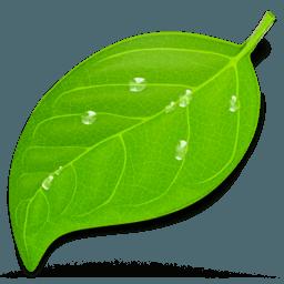 Coda 2 - Graphic Design Tools