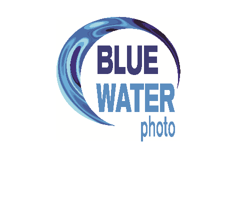 Blue Water Photo Photography Logo