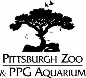 Pittersbug Zoo Awesome Logo Design