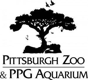 Pittersbug Zoo Awesome Logo Design