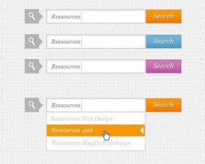 search-box-psd-37