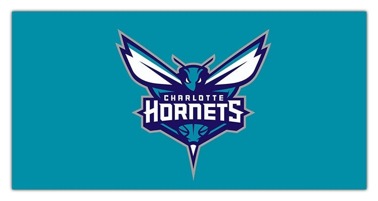sports logos most hornets charlotte team talked designs sport source designhill