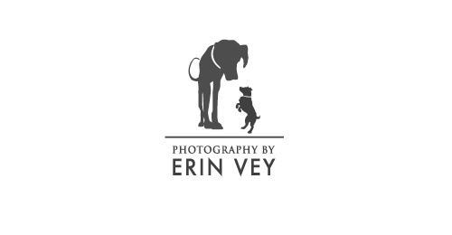 Erin Vey Photography Themed Logo Designs