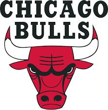 Sports Logos 8 - Chicago Bulls Sports Logo