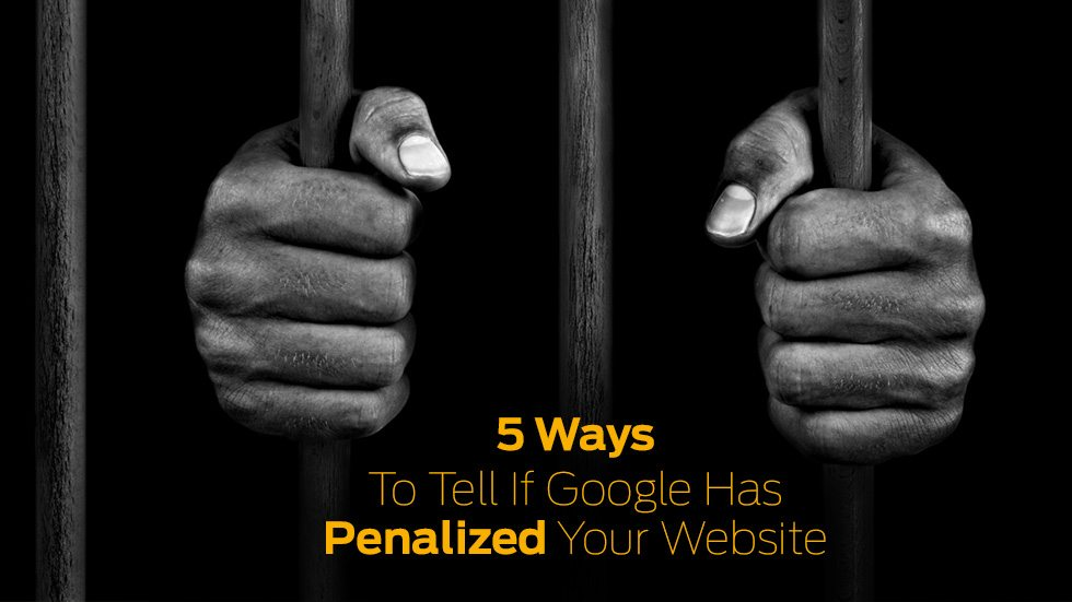 Penalized Your Website