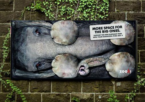 Zoo Zurich Signage  Design