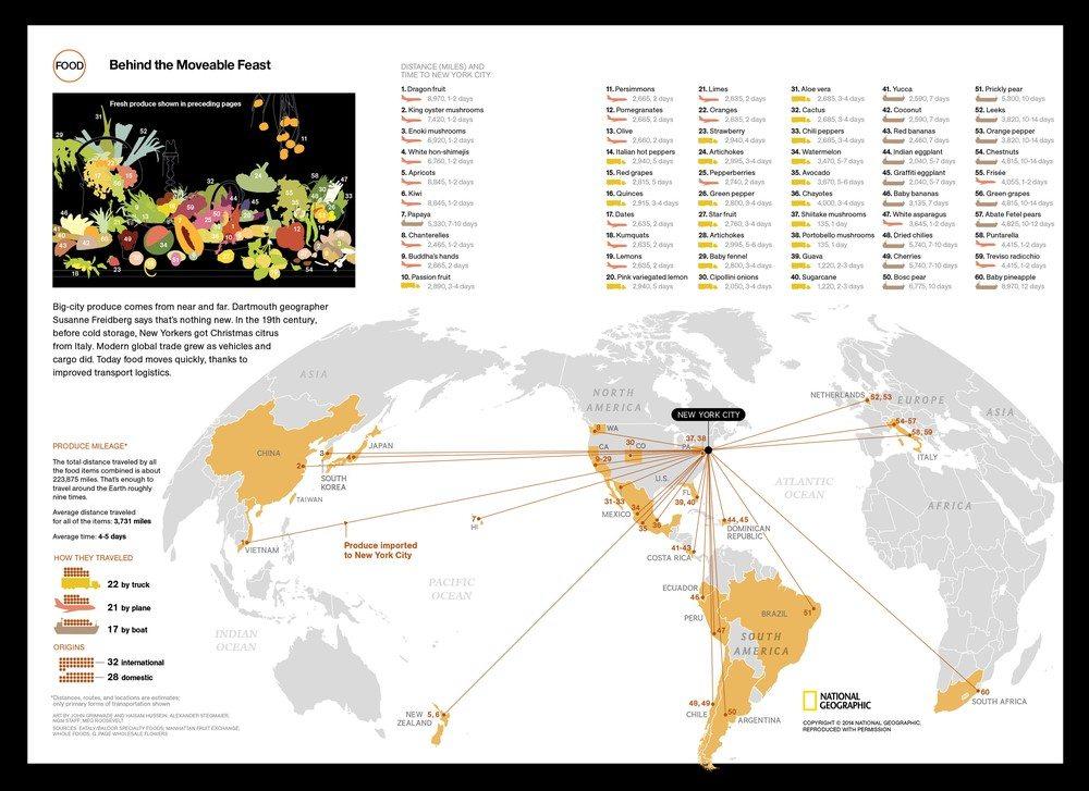 Global Fruit Bowl