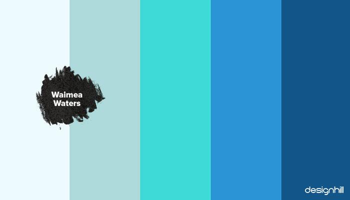Waimea Waters colors