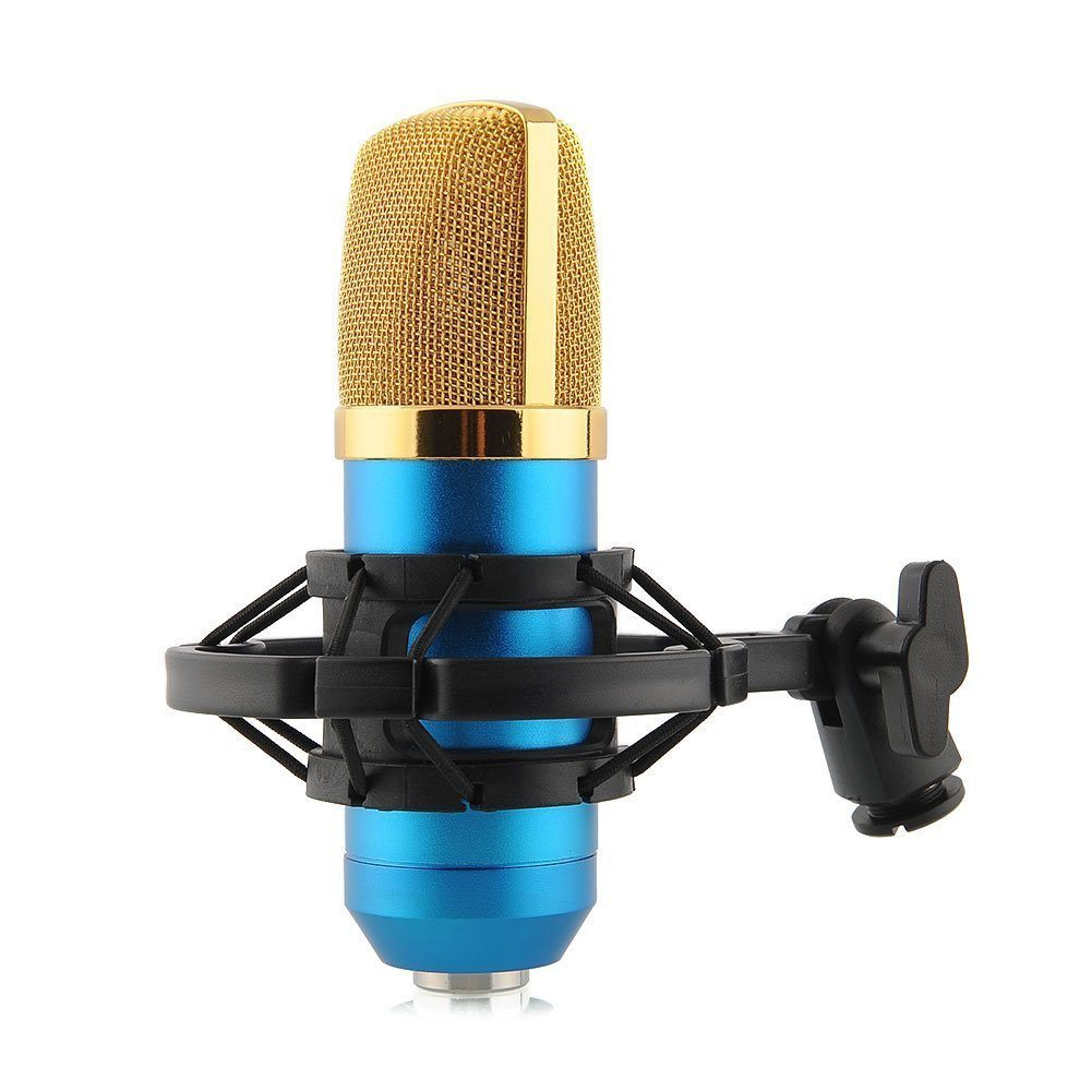 High Quality Microphone