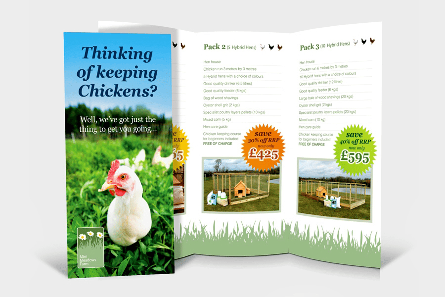 9 Rules For Starting Your Own Poultry Farm