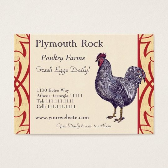 poultry business card