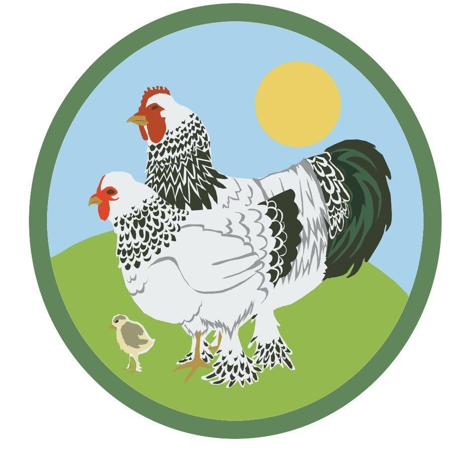 poultry farm logo