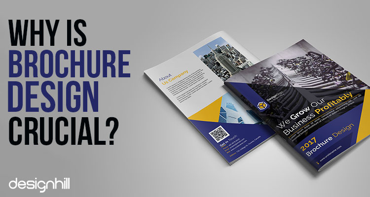 role of brochure design in a startup s success