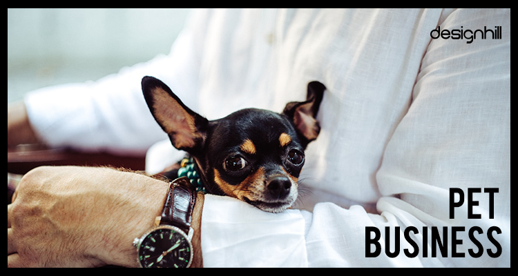 17 Small Business Idea: Pet Business