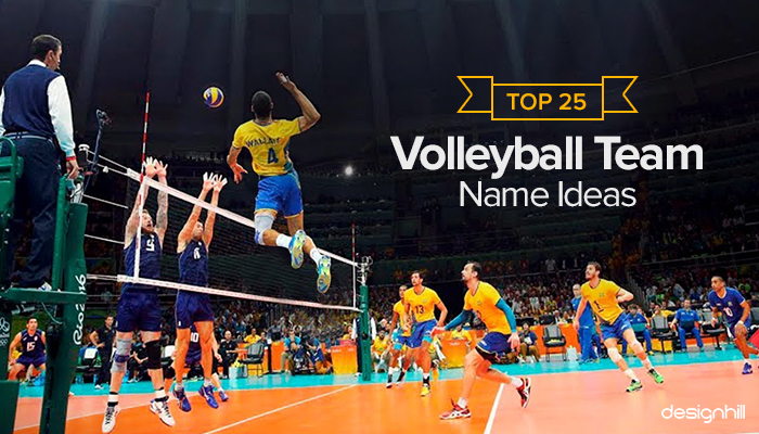 Volleyball Team Name