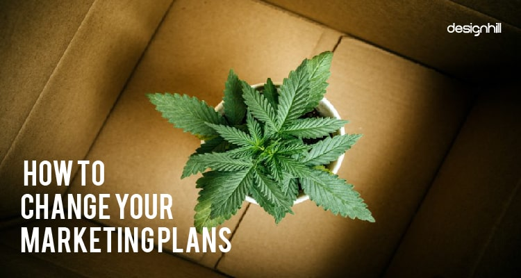 Your Marketing Plans
