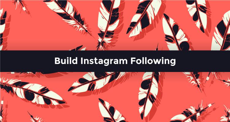 Build Instagram Following