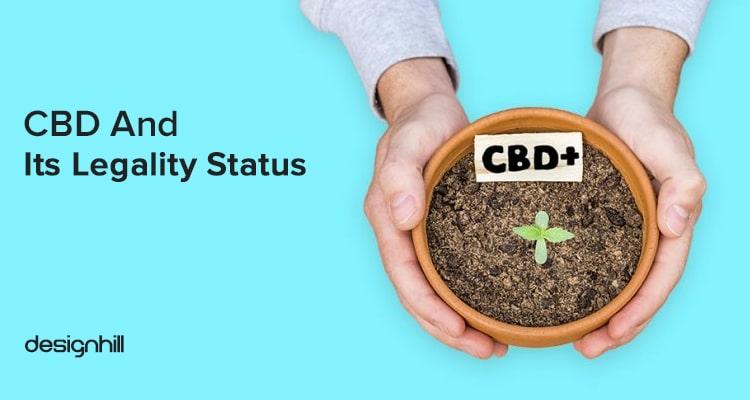Cannabis Business