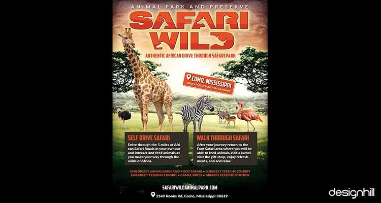 Safari Wild
