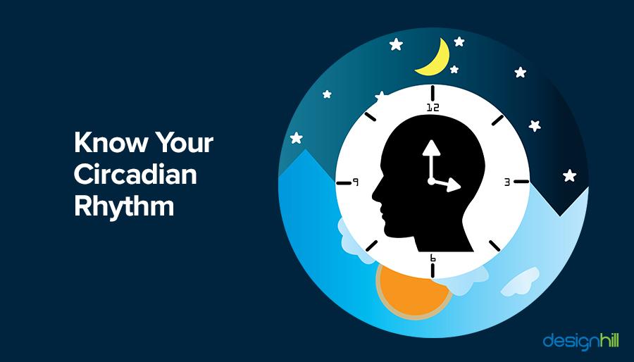 Know Your Circadian Rhythm