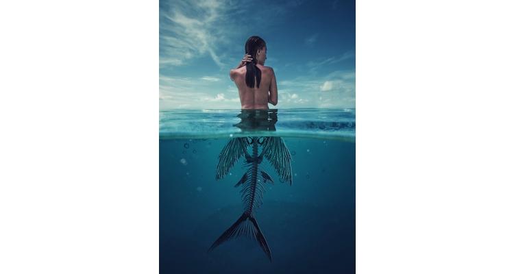 Mermaid Skelton