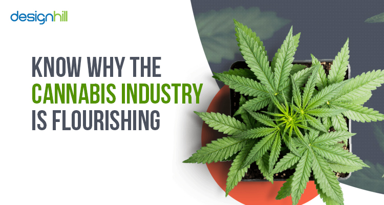 Cannabis Industry Is Flourishing