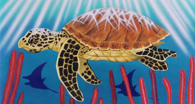 Tortoise Art by Fred
