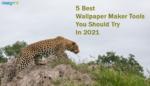 Best Wallpaper Maker Tools
