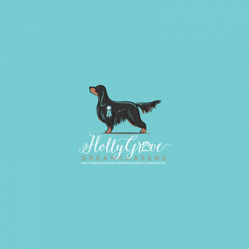 Online Animal & Pet Logo Design