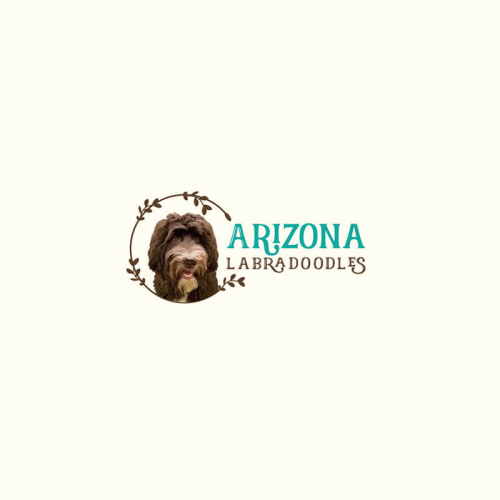Pet & Animal Logo Design