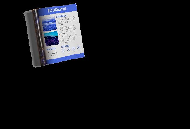 media kit or electronic press kit